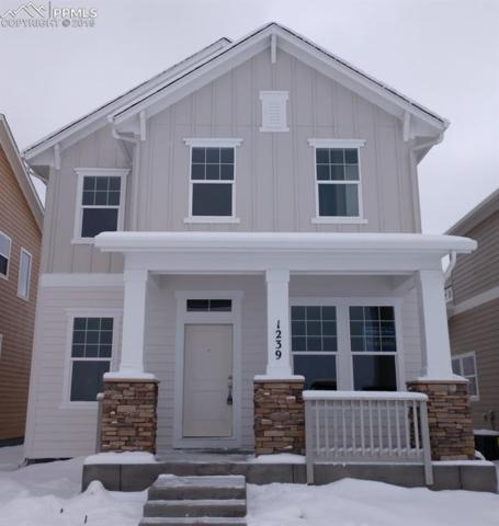 1239 Solitaire Street, Colorado Springs, CO 80905 (#7565048) :: Harling Real Estate