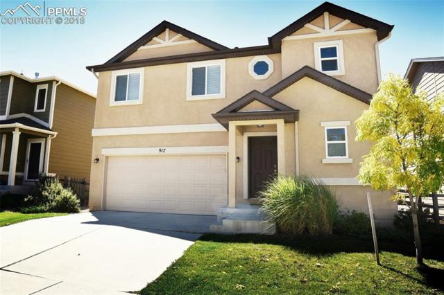 917 Fire Rock Place, Colorado Springs, CO 80921 (#7593506) :: 8z Real Estate