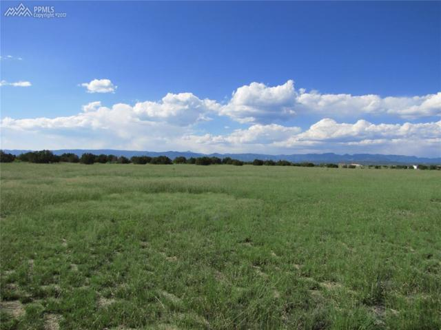 1665 12th Street, Penrose, CO 81240 (#7607210) :: 8z Real Estate