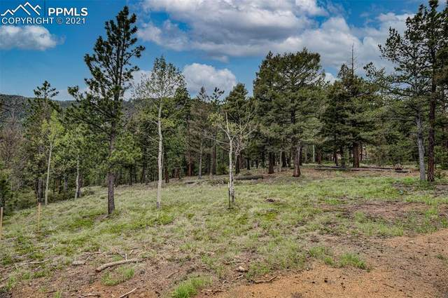 212 Coffee Pot Road, Manitou Springs, CO 80829 (#7664185) :: Fisk Team, eXp Realty
