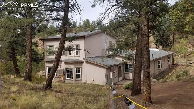 203 Apache Road, Florissant, CO 80816 (#7763010) :: The Harling Team @ Homesmart Realty Group