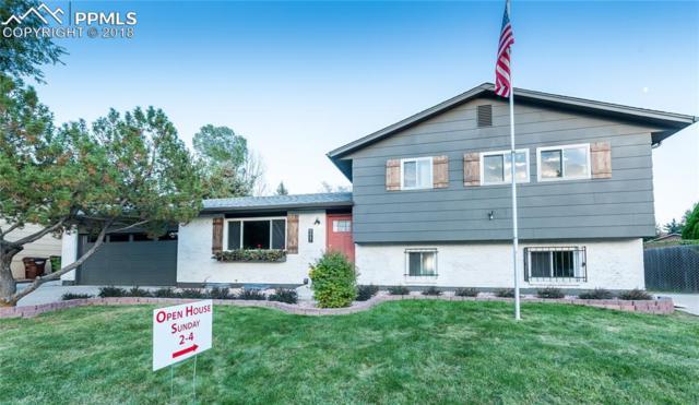 4447 Ranch Circle, Colorado Springs, CO 80918 (#7805037) :: 8z Real Estate
