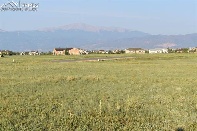 7752 Bannockburn Trail, Colorado Springs, CO 80908 (#7859350) :: CC Signature Group