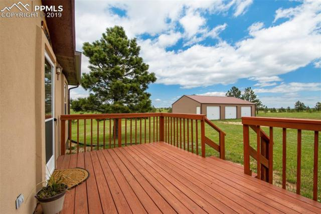 17660 Cleese Court, Peyton, CO 80831 (#7864905) :: Fisk Team, RE/MAX Properties, Inc.