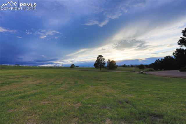 3303 Blue Heron Spring Lane, Colorado Springs, CO 80908 (#8069579) :: The Kibler Group