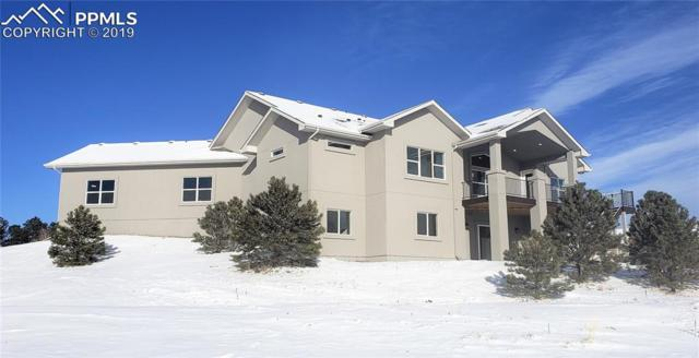 19353 Queens Crescent Way, Monument, CO 80132 (#8117570) :: 8z Real Estate