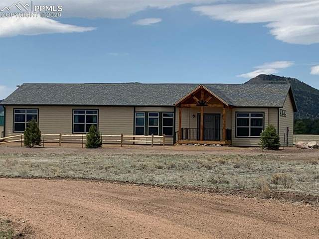 1925 Doe Valley Road, Guffey, CO 80820 (#8148805) :: Tommy Daly Home Team
