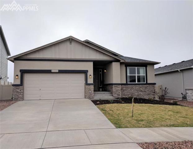 8449 Salt Brush Road, Colorado Springs, CO 80908 (#8163759) :: 8z Real Estate