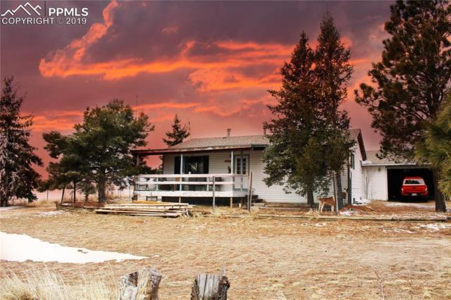 990 Slocum Road, Colorado Springs, CO 80930 (#8181484) :: Perfect Properties powered by HomeTrackR