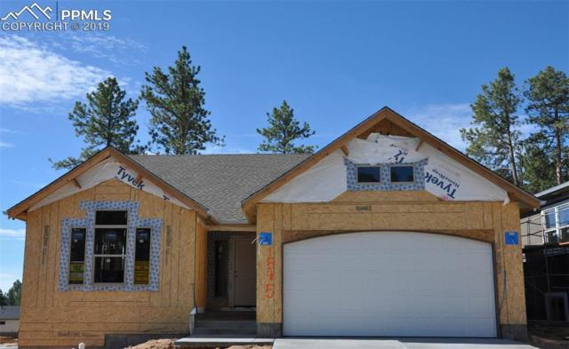 1545 Catnap Lane, Monument, CO 80132 (#8273169) :: Action Team Realty