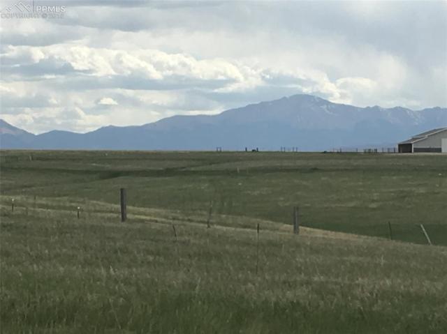 17855 Bar X Road, Colorado Springs, CO 80908 (#8279126) :: The Treasure Davis Team