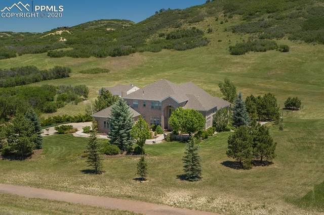 4502 Serenade Road, Castle Rock, CO 80104 (#8286306) :: Tommy Daly Home Team
