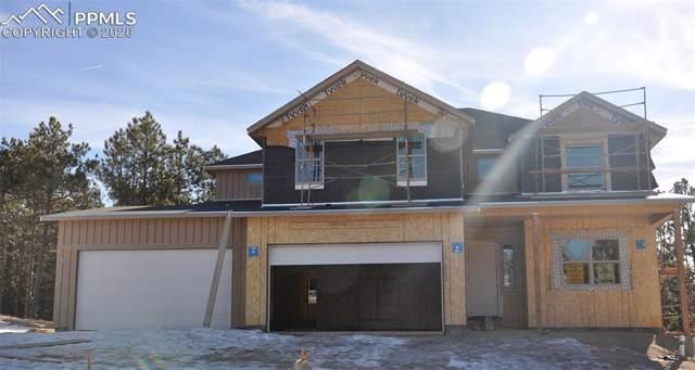 969 Tree Bark Terrace, Colorado Springs, CO 80132 (#8333022) :: The Kibler Group