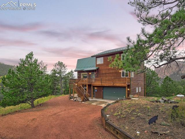 316 Sunset Lane, Cripple Creek, CO 80813 (#8401174) :: Colorado Home Finder Realty