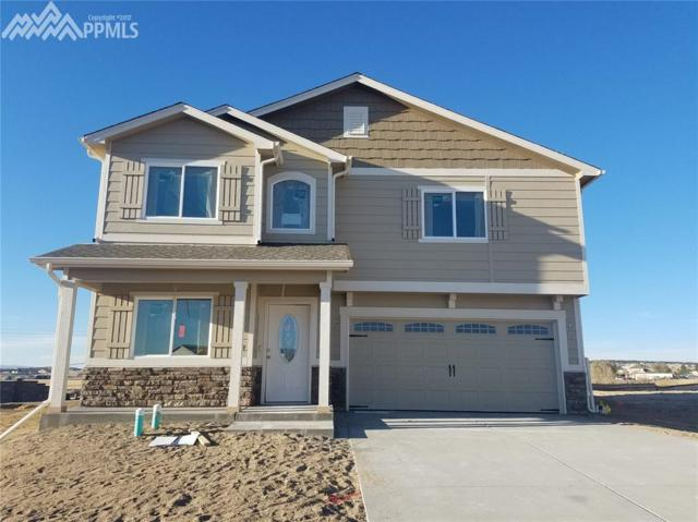 6813 Oak Vine Court, Colorado Springs, CO 80908 (#8421225) :: 8z Real Estate