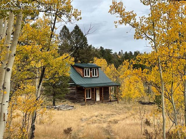 TBD Crested Butte Drive, Lake George, CO 80827 (#8462912) :: Simental Homes | The Cutting Edge, Realtors