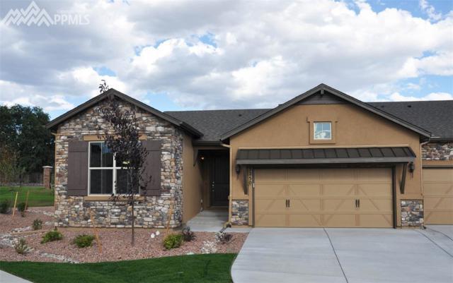 3250 Excelsior Drive, Colorado Springs, CO 80920 (#8498911) :: 8z Real Estate