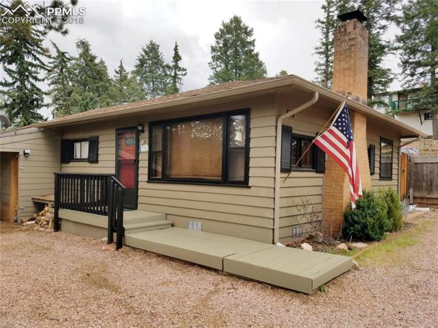 519 S Park Street, Woodland Park, CO 80863 (#8651136) :: Colorado Home Finder Realty
