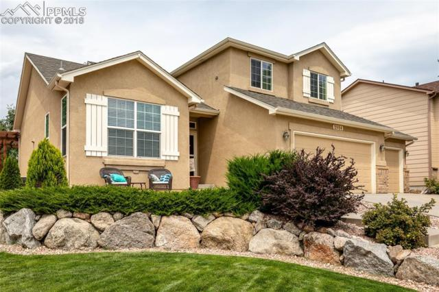 1984 Coldstone Way, Colorado Springs, CO 80921 (#8703180) :: Action Team Realty