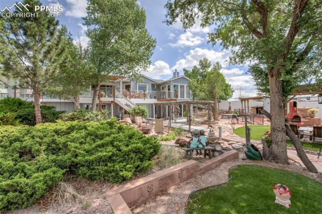 7475 Mallard Drive, Peyton, CO 80831 (#8715126) :: Action Team Realty