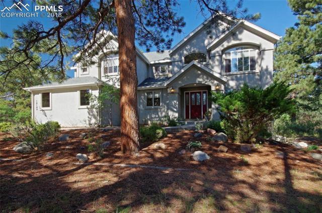 18180 Sunburst Drive, Monument, CO 80132 (#8756936) :: 8z Real Estate