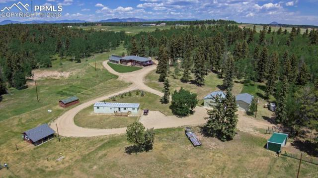 391 County 51 Road, Divide, CO 80814 (#8757804) :: The Treasure Davis Team