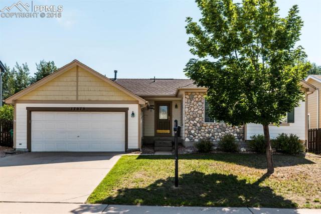17075 Snowwood Drive, Monument, CO 80132 (#8766646) :: Action Team Realty