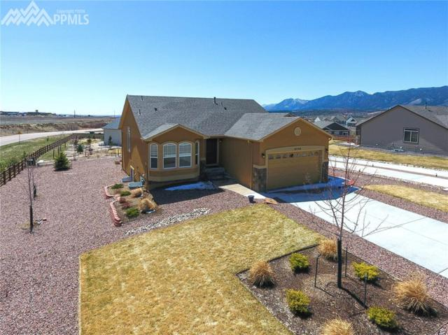 16748 Buffalo Valley Path, Monument, CO 80132 (#8810821) :: Action Team Realty
