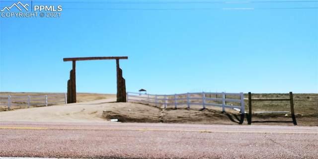7263 Wrangler Ranch View, Peyton, CO 80831 (#8831527) :: The Daniels Team