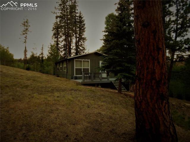 615 Turkey Creek Drive, Sedalia, CO 80135 (#8933977) :: Action Team Realty