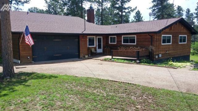 223 Kiowa Avenue, Woodland Park, CO 80863 (#8977664) :: 8z Real Estate