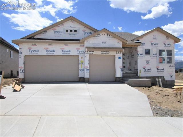 1065 Sir Barton Drive, Colorado Springs, CO 80921 (#9036004) :: The Daniels Team