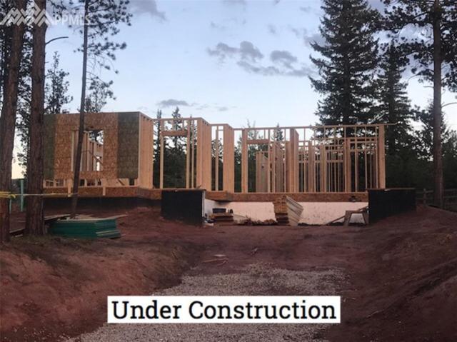 1101 Ptarmigan Drive, Woodland Park, CO 80863 (#9050259) :: 8z Real Estate