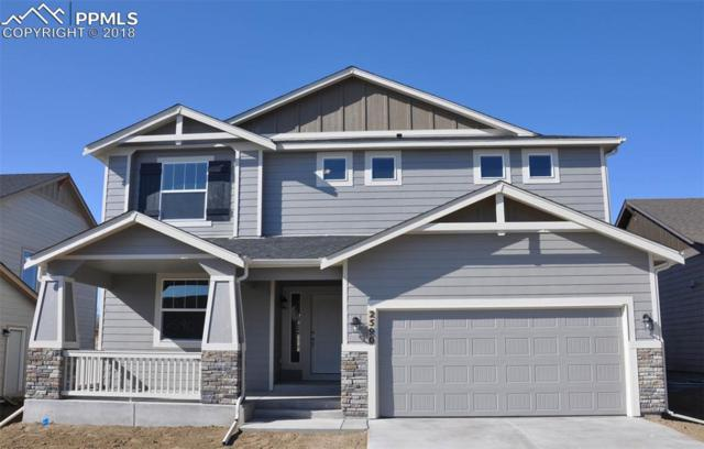 2590 Grand Prix Court, Colorado Springs, CO 80922 (#9083399) :: The Kibler Group
