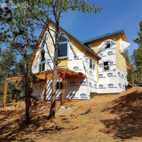 68 Elkhorn Circle, Florissant, CO 80816 (#9093535) :: 8z Real Estate