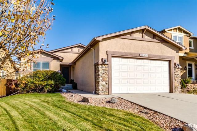 7995 Mount Hayden Drive, Colorado Springs, CO 80924 (#9159657) :: 8z Real Estate