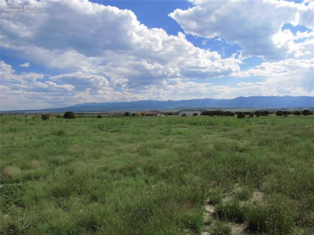 78 Tumbleweed Trail, Penrose, CO 81240 (#9241857) :: 8z Real Estate