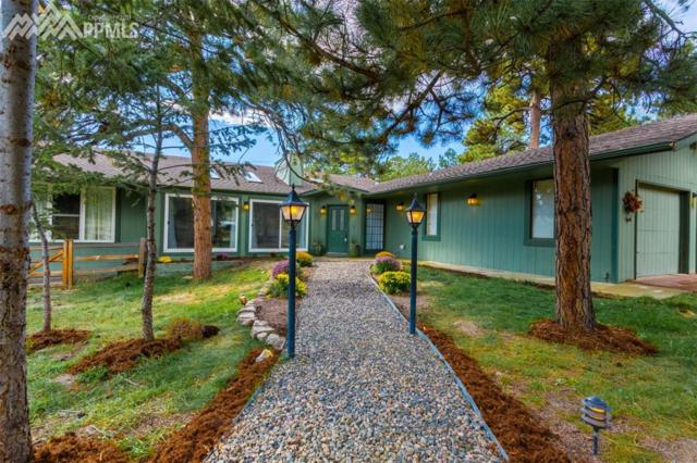 19320 Robin Hood Way, Monument, CO 80132 (#9253453) :: 8z Real Estate