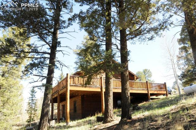 17 Deer Lake Circle, Divide, CO 80814 (#9276266) :: CC Signature Group