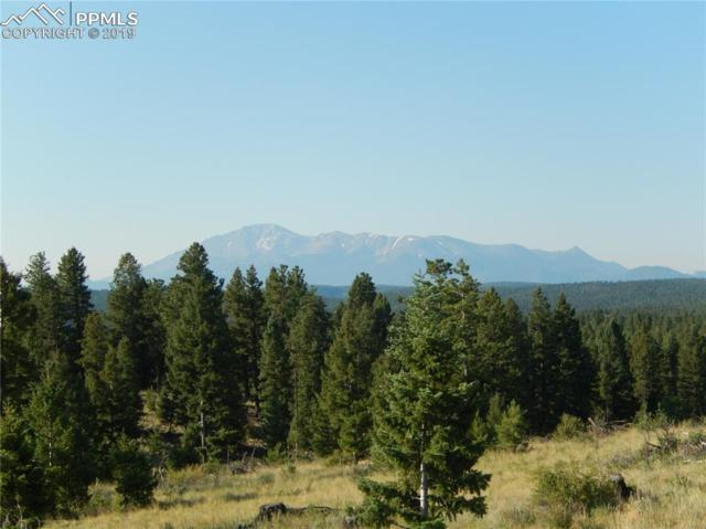 TBD Being Verified Road, Woodland Park, CO 80863 (#9324776) :: Tommy Daly Home Team