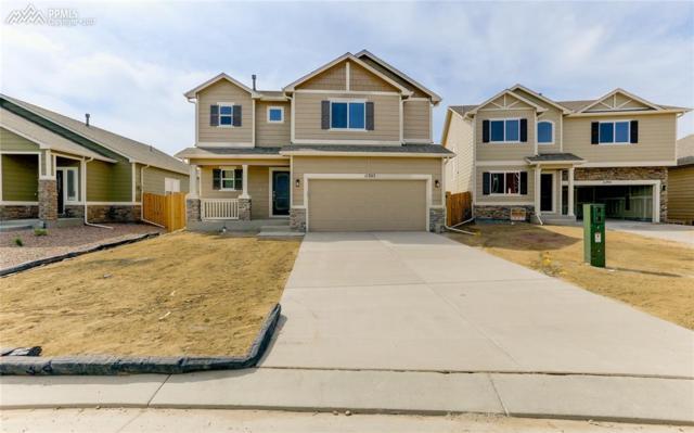 11305 Avena Road, Peyton, CO 80831 (#9340223) :: 8z Real Estate