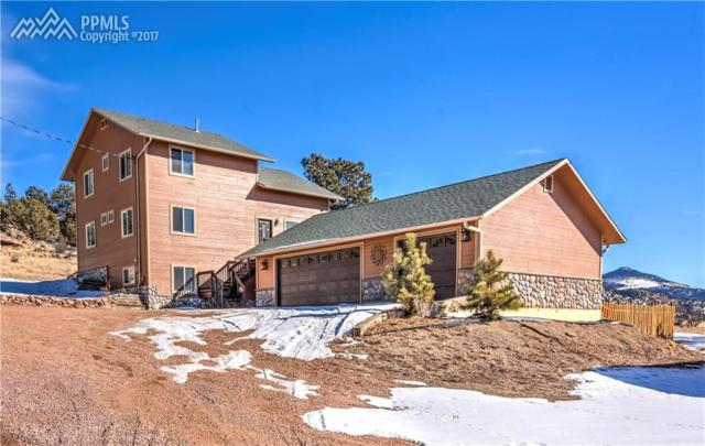 524 Spring Valley Drive, Florissant, CO 80816 (#9360411) :: 8z Real Estate