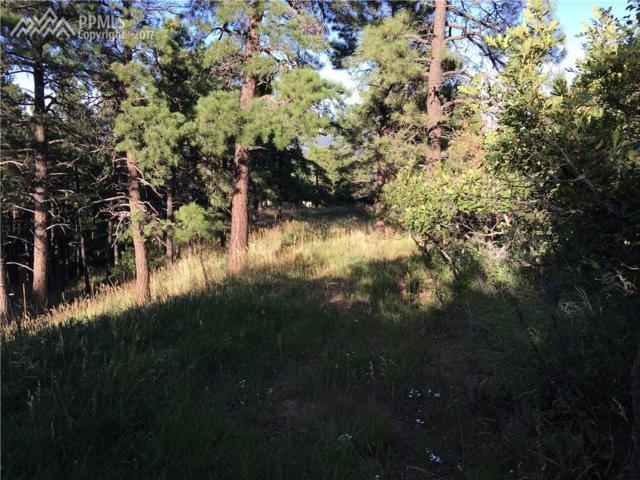 17 Midland Road, Colorado Springs, CO 80906 (#9465881) :: Action Team Realty