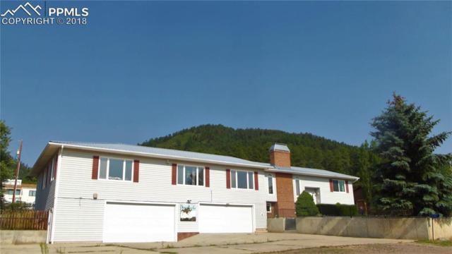600 El Paso Road, Palmer Lake, CO 80133 (#9574927) :: Colorado Home Finder Realty