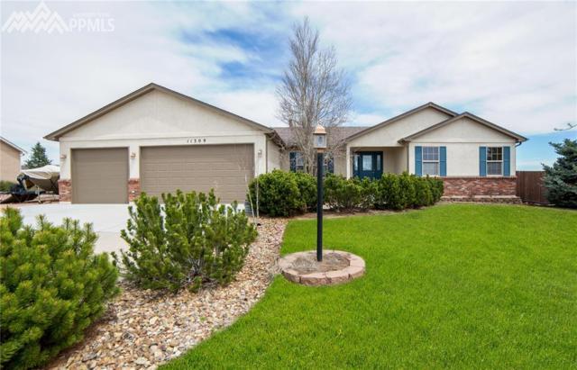 11309 Palmers Green Drive, Peyton, CO 80831 (#9580528) :: 8z Real Estate