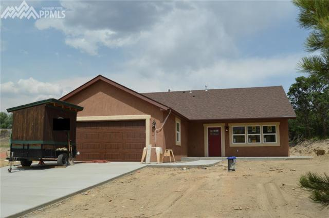 817 Meadow Lane, Palmer Lake, CO 80133 (#9606310) :: Fisk Team, RE/MAX Properties, Inc.