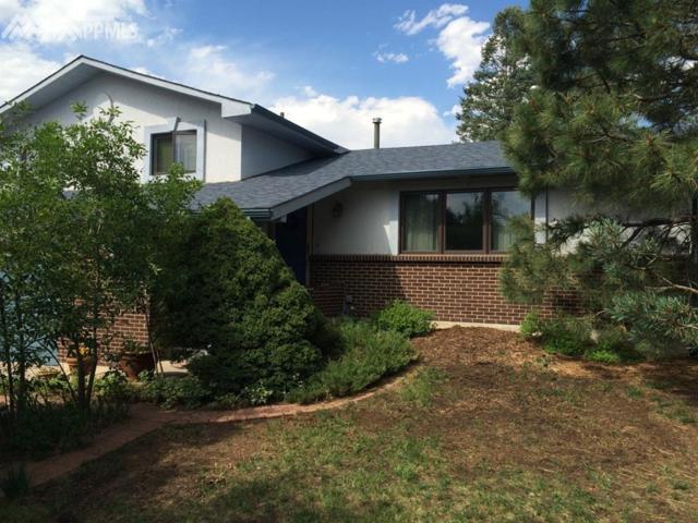 2923 La Estrella Circle, Colorado Springs, CO 80917 (#9663779) :: The Peak Properties Group