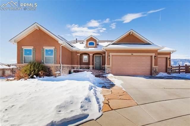 716 Black Arrow Drive, Colorado Springs, CO 80921 (#9667540) :: Venterra Real Estate LLC
