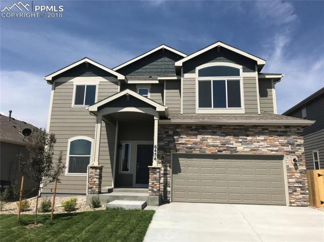 6454 Mountain Dale Drive, Colorado Springs, CO 80927 (#9670365) :: Jason Daniels & Associates at RE/MAX Millennium