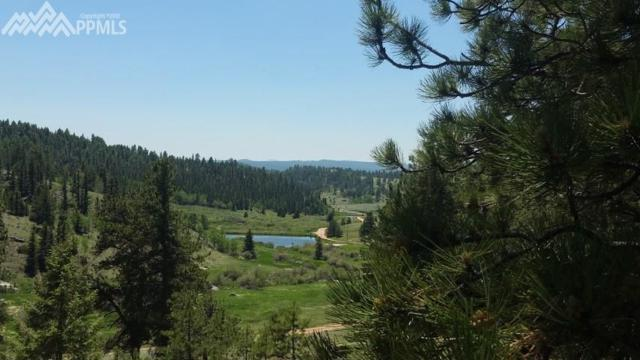 4583 W Highway 24 Highway, Florissant, CO 80816 (#9753038) :: Action Team Realty